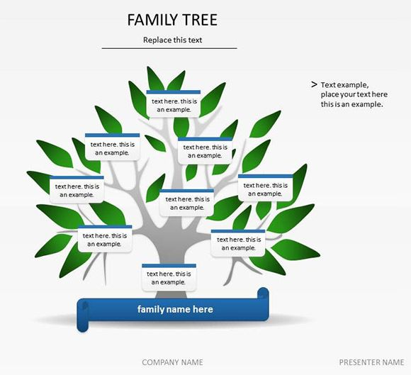 Family Tree Template - 50+ Download Free Documents in PDF, Word - family tree example