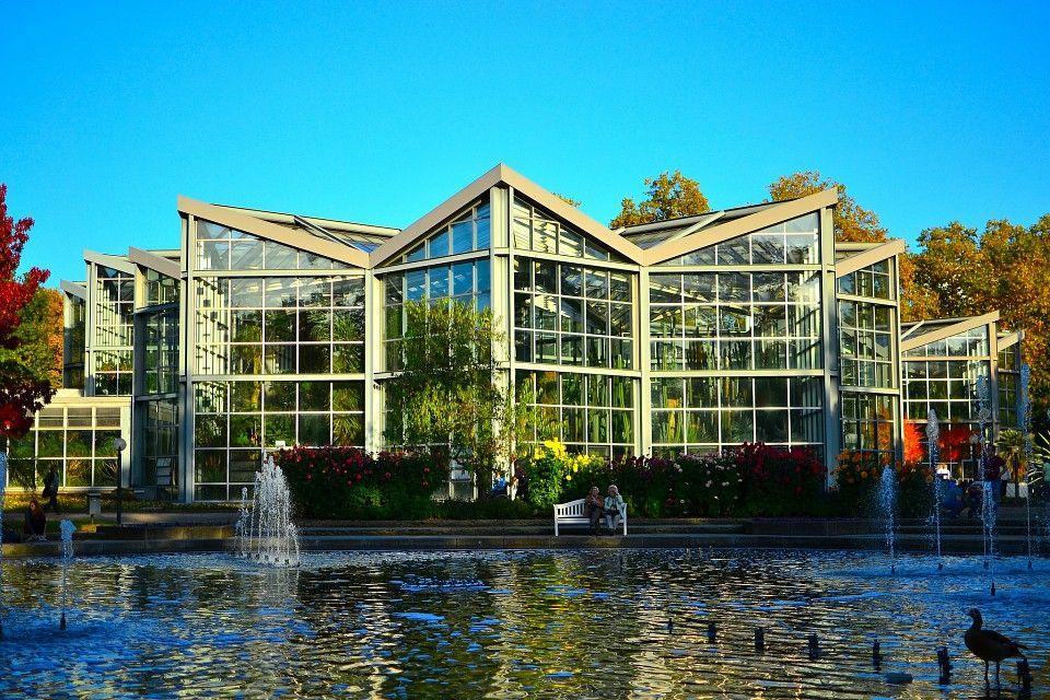 Palmengarten Botanic Garden In Frankfurt Botanical Gardens Frankfurt Alpine Plants
