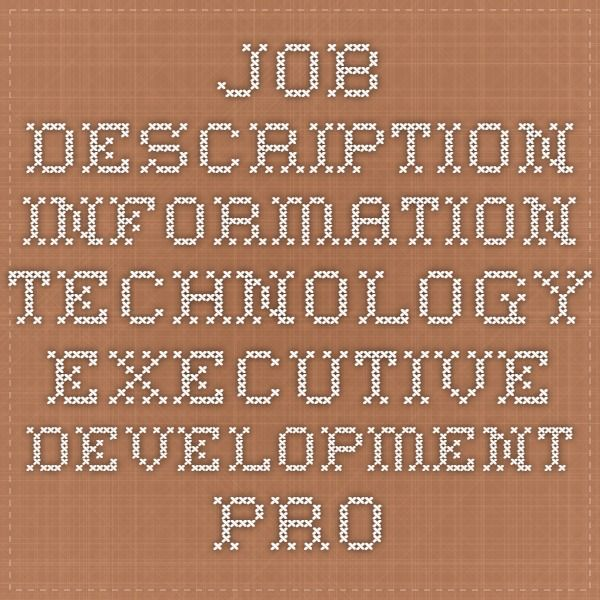 Job Description  Information Technology Executive Development
