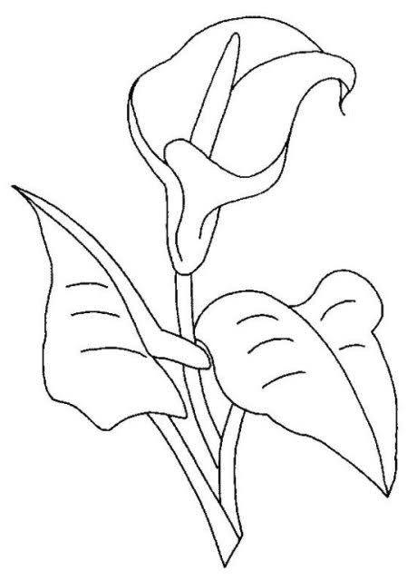 Dibujos Ayuda Dibujos De Flores Dibujos Y Flores Pintadas