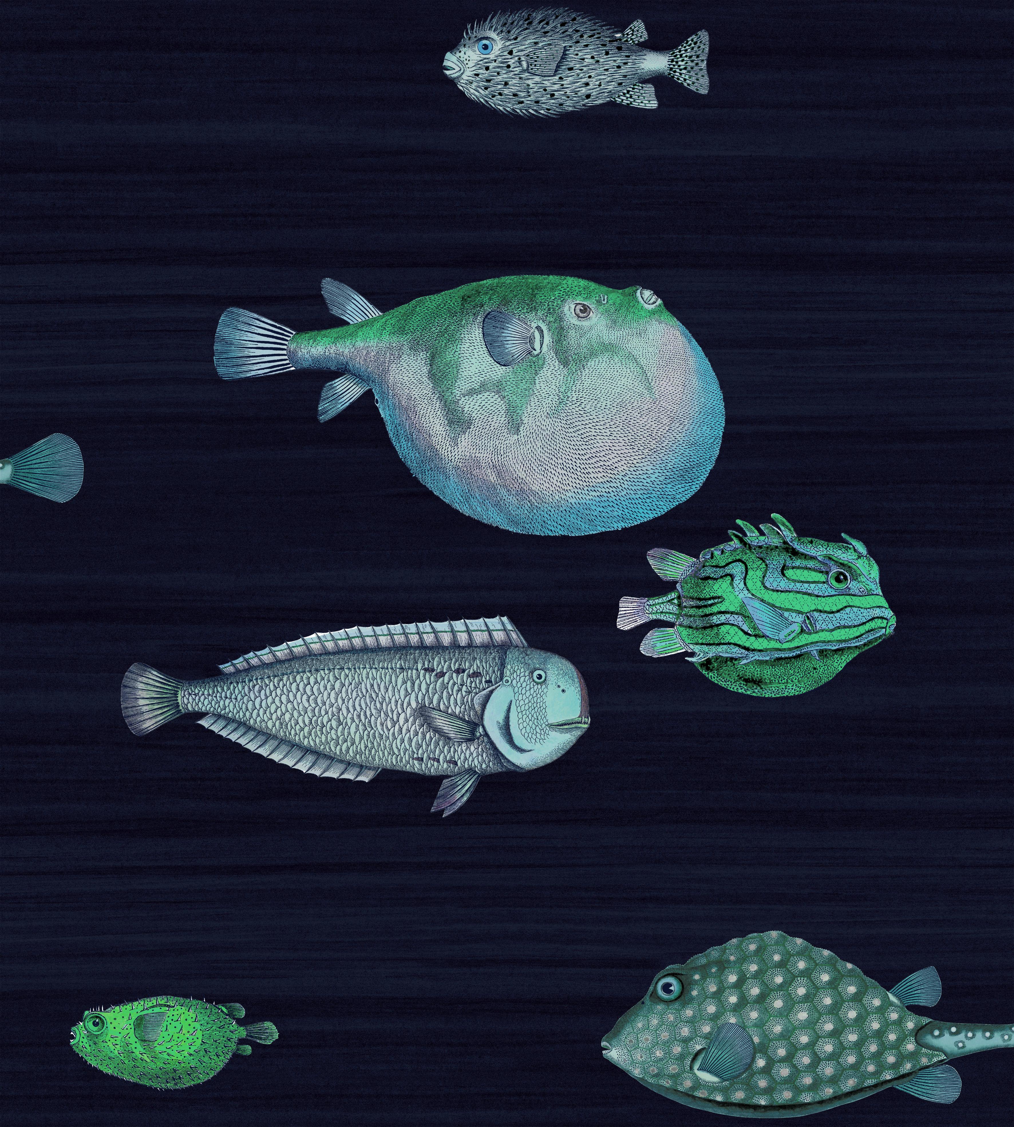 papier peint acquario poisson 2 pinterest papier peint peindre et poissons. Black Bedroom Furniture Sets. Home Design Ideas