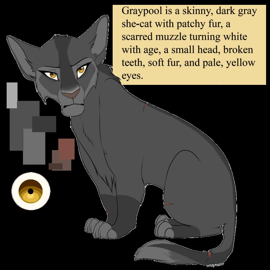 Graypool By Purespiritflower Deviantart Com On Deviantart Warrior Cats Art Warrior Cats Books Warrior Cats Fan Art