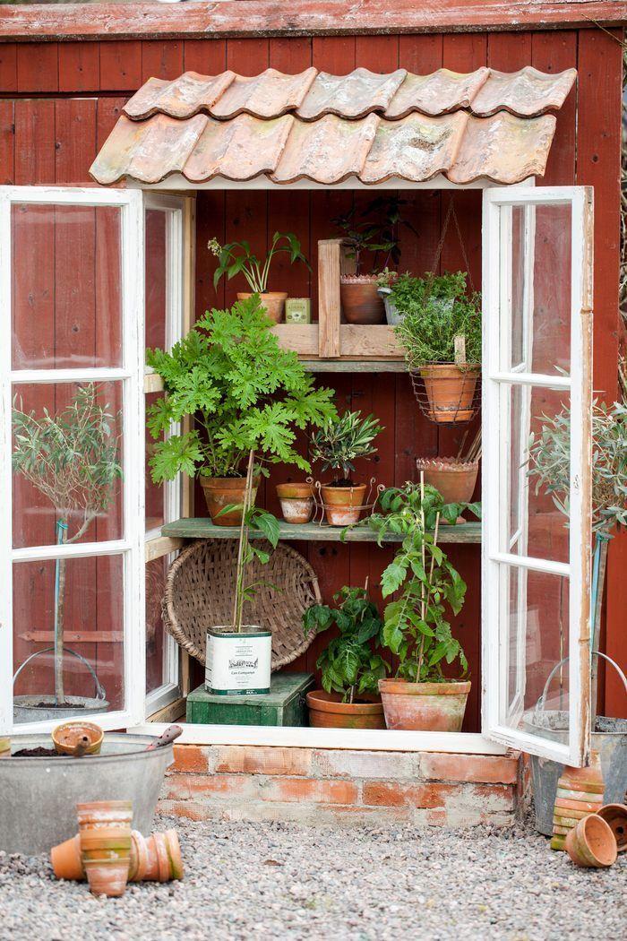 Photo of Bygging av minihus fra gamle vinduer trinn for trinn Live & stay, #old #aus …