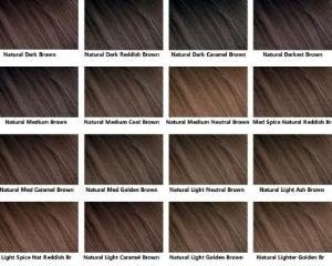 brown hair color chart gloriau