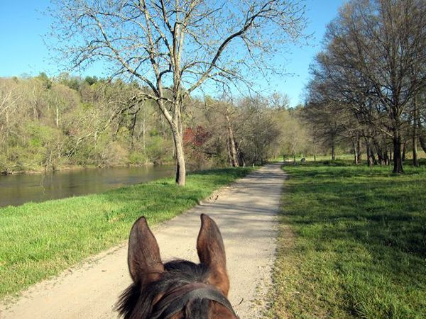 Horseback riding French Broad River at Biltmore Estate in