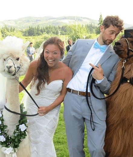 Pin Auf Weddinggoals Alles Zum Thema Verlobung Hochzeit