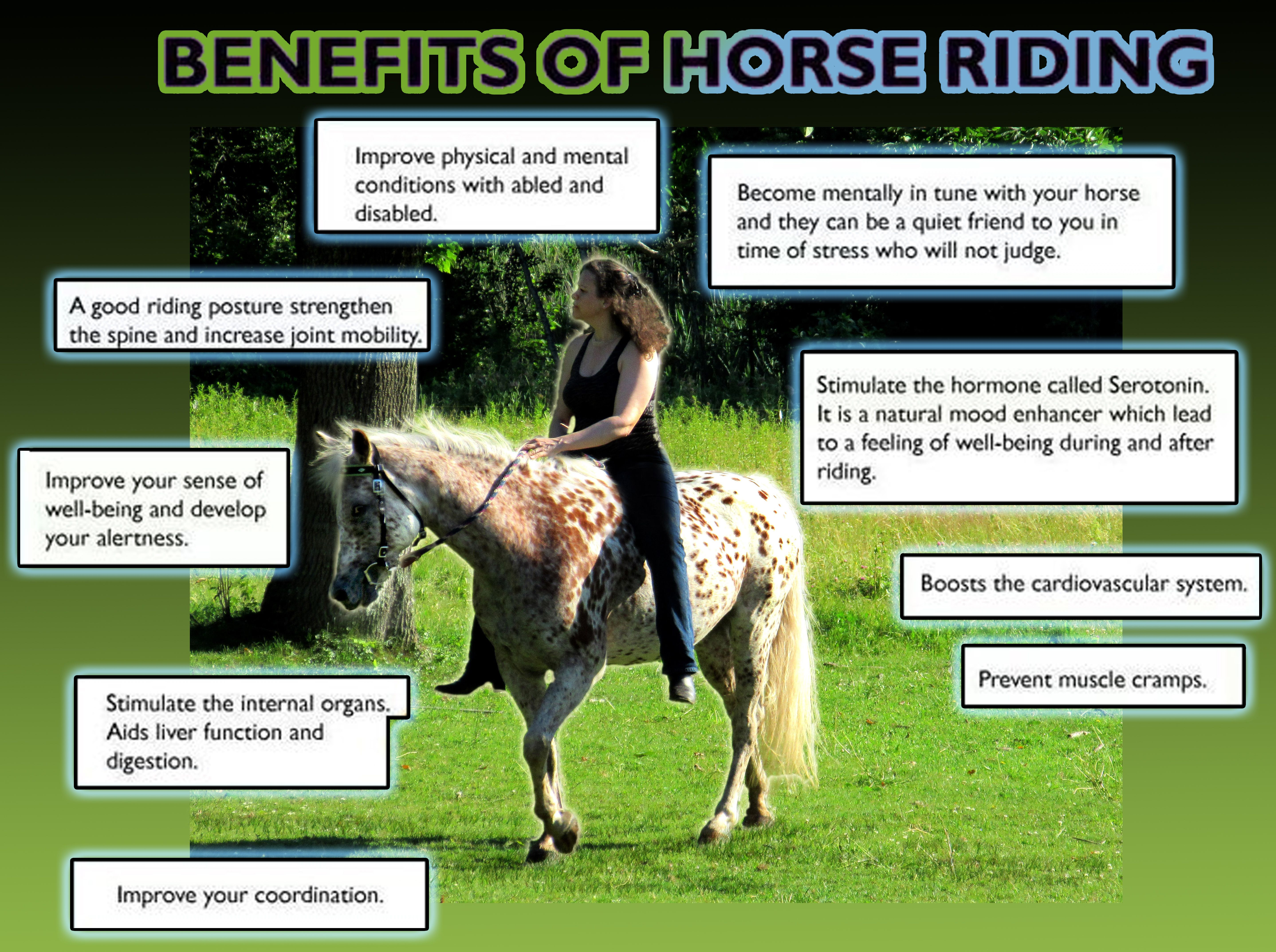 Benefits of Horse Riding Horses, Horse riding, Horseback