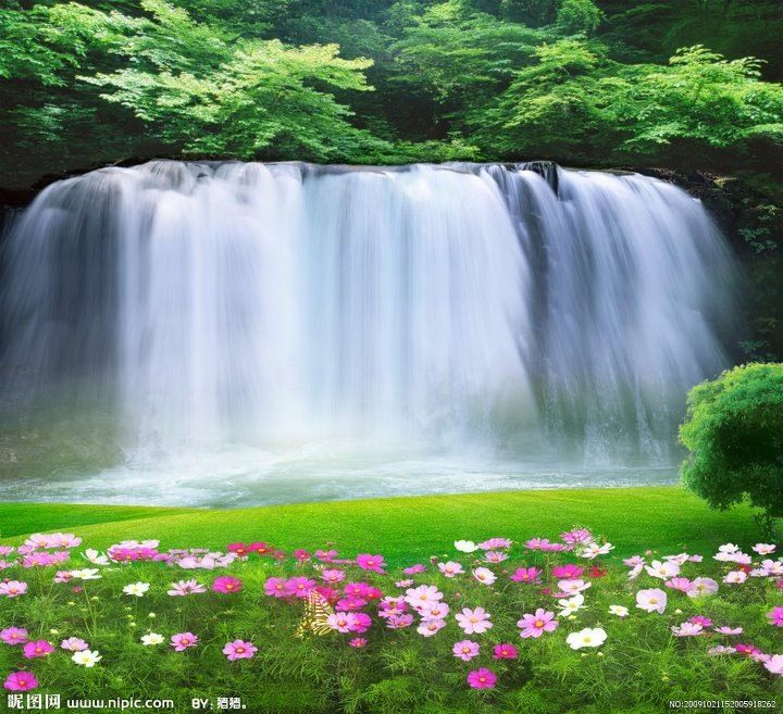 Beautiful Waterfall Beautiful Flowers Beautiful View Foto Fony Fotografii Fonov Fotografii Zadnih Planov