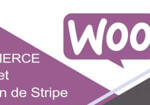 Creer Un E Commerce Wordpress Installer Et Configurer Woocommerce Cms Codeur In 2020 Ecommerce Gaming Logos Commerce