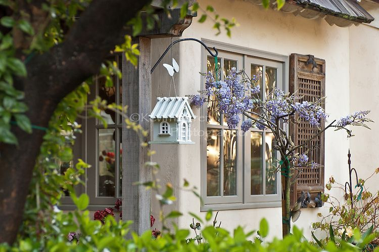The streets of downtown Carmel California are lined with beautiful homes, bird houses and gardens.  A walk down to and along the beach is breath taking.