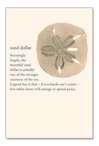 photograph relating to The Legend of the Sand Dollar Printable referred to as the legend of the sand greenback printable - Google Seem