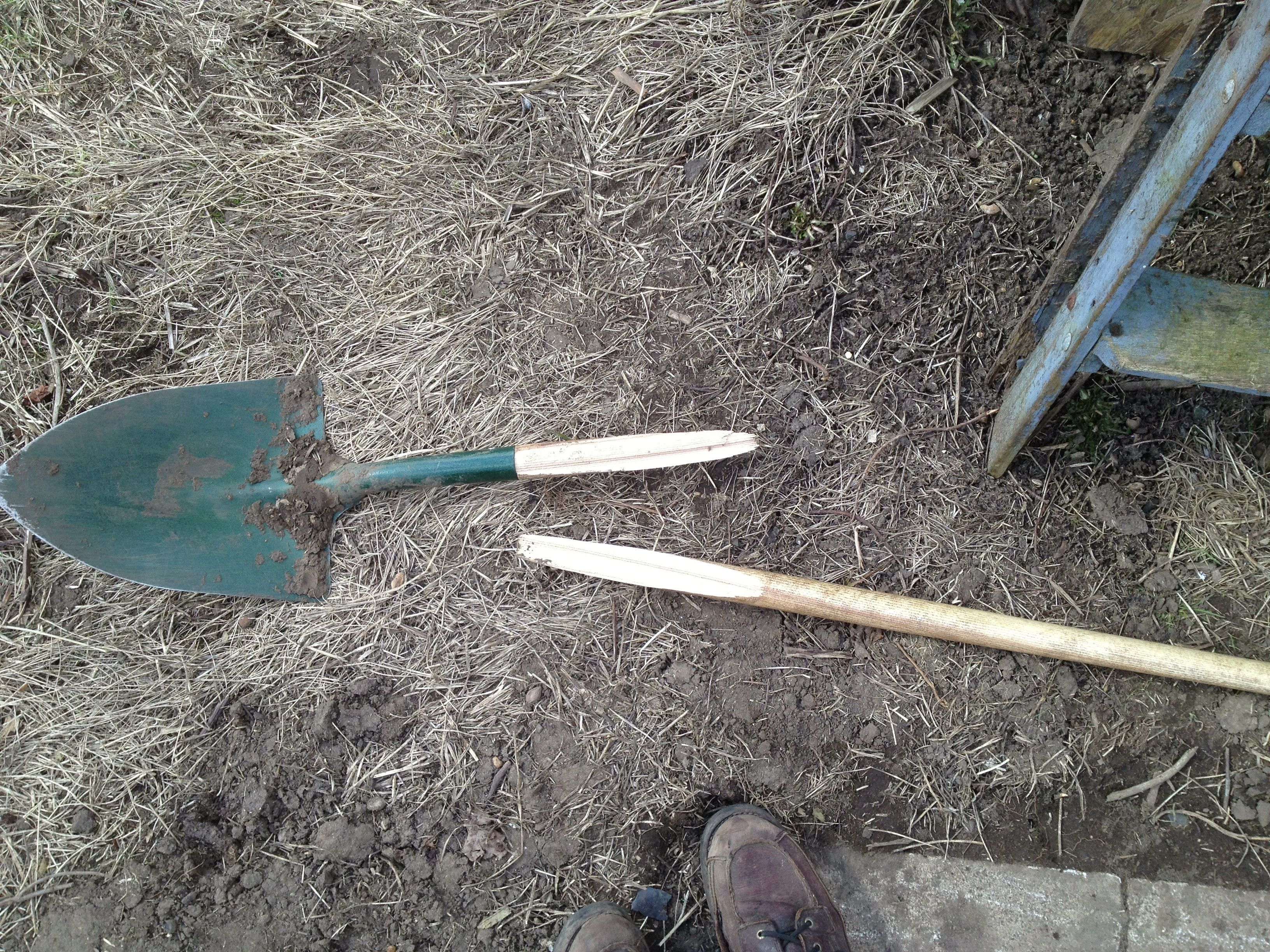 March 2013 Spade No 3 Bites The Dust Clay Loam That Has Not Been Dug In 4 Years Hard Ground Loam Garden Tools Spade Shovel