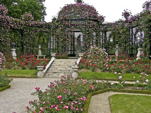 Výsledek obrázku pro rose garden near paris