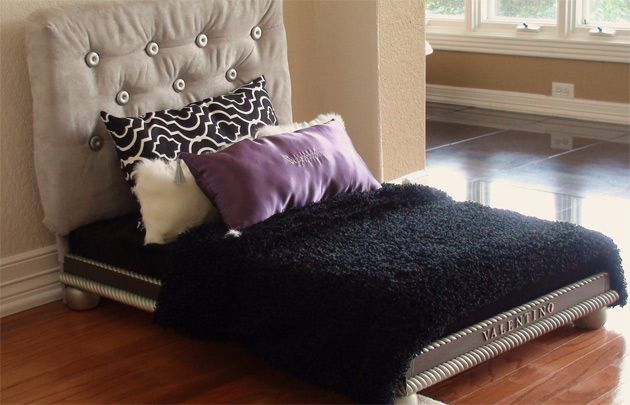 Luxury Dog Bed For The Pampered Pup Covered Headboard Mattress