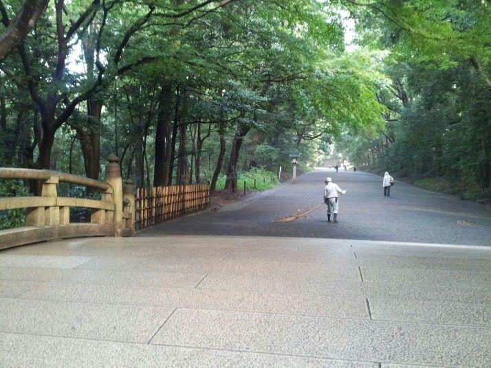 Meji. bridge to shrine and sweeper. many acorns on the ground