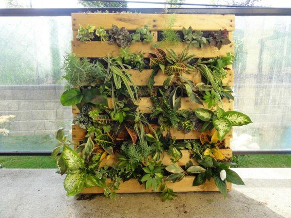 Europaletten Im Garten Verwenden Vertikal Pflanzen Arten ... Vertikale Bepflanzung Ideen Tipps Garten