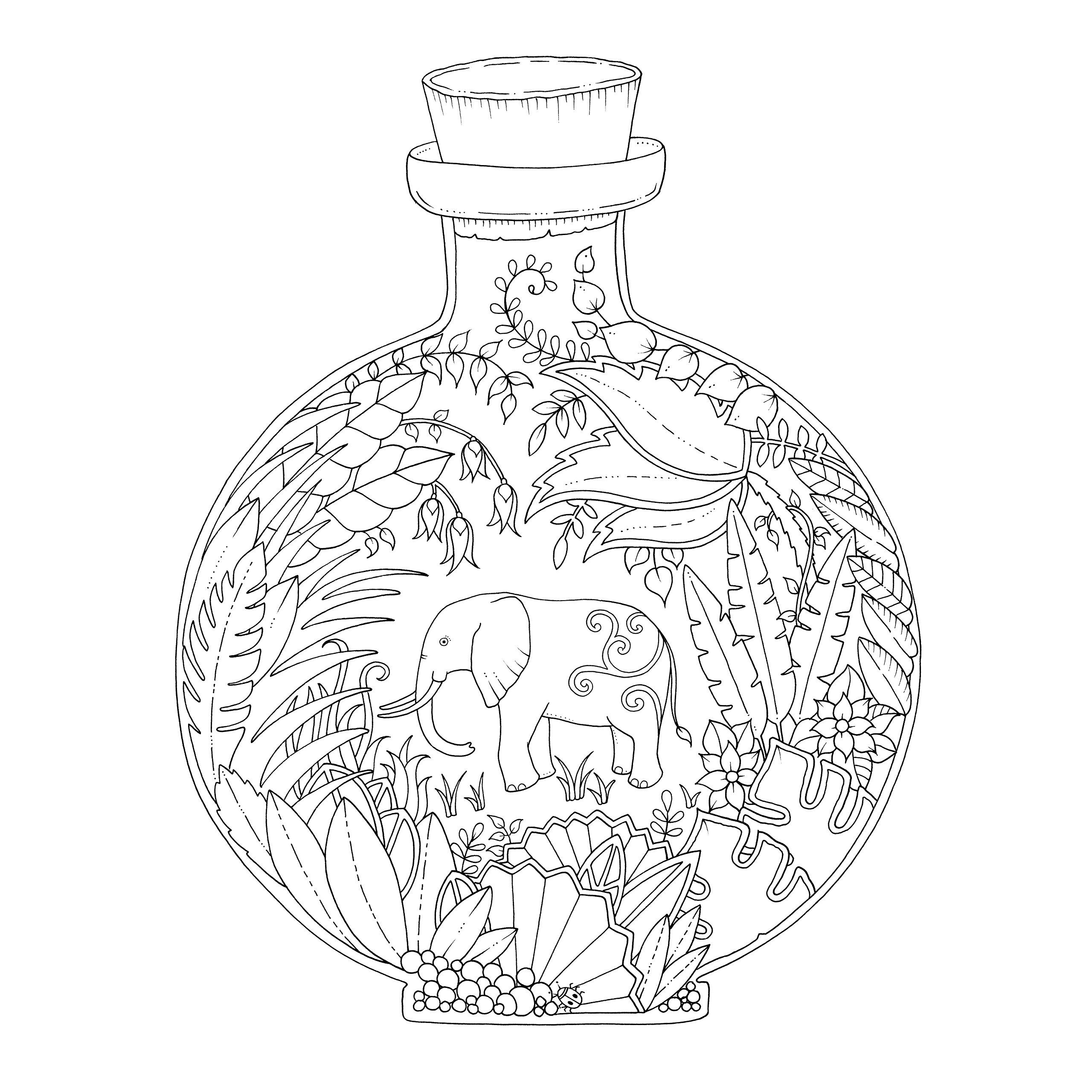 magical jungle an inky expedition u0026 colouring book colouring