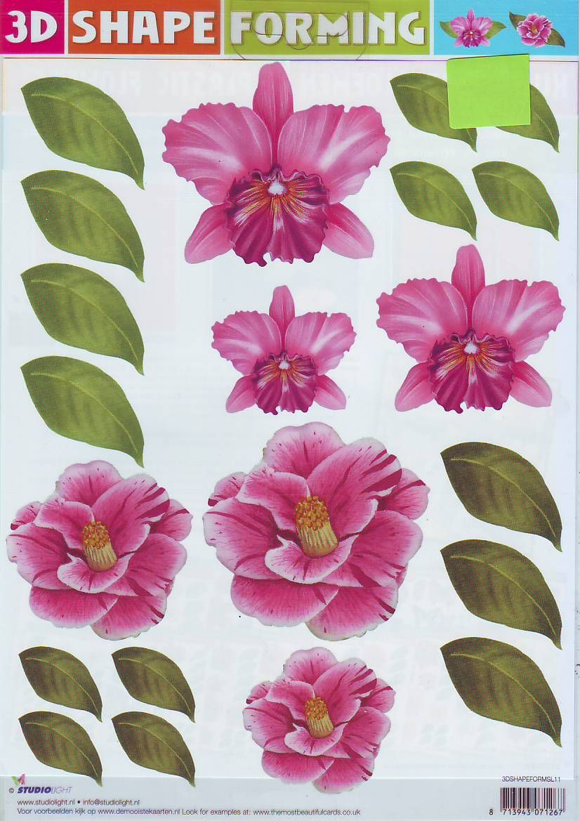 85 2 x A4 Die Cut 3D Paper Forming Flower Toppers by Studio Light