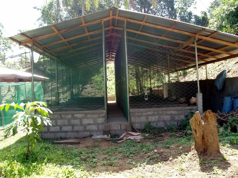 how to start a dog kennel business in india