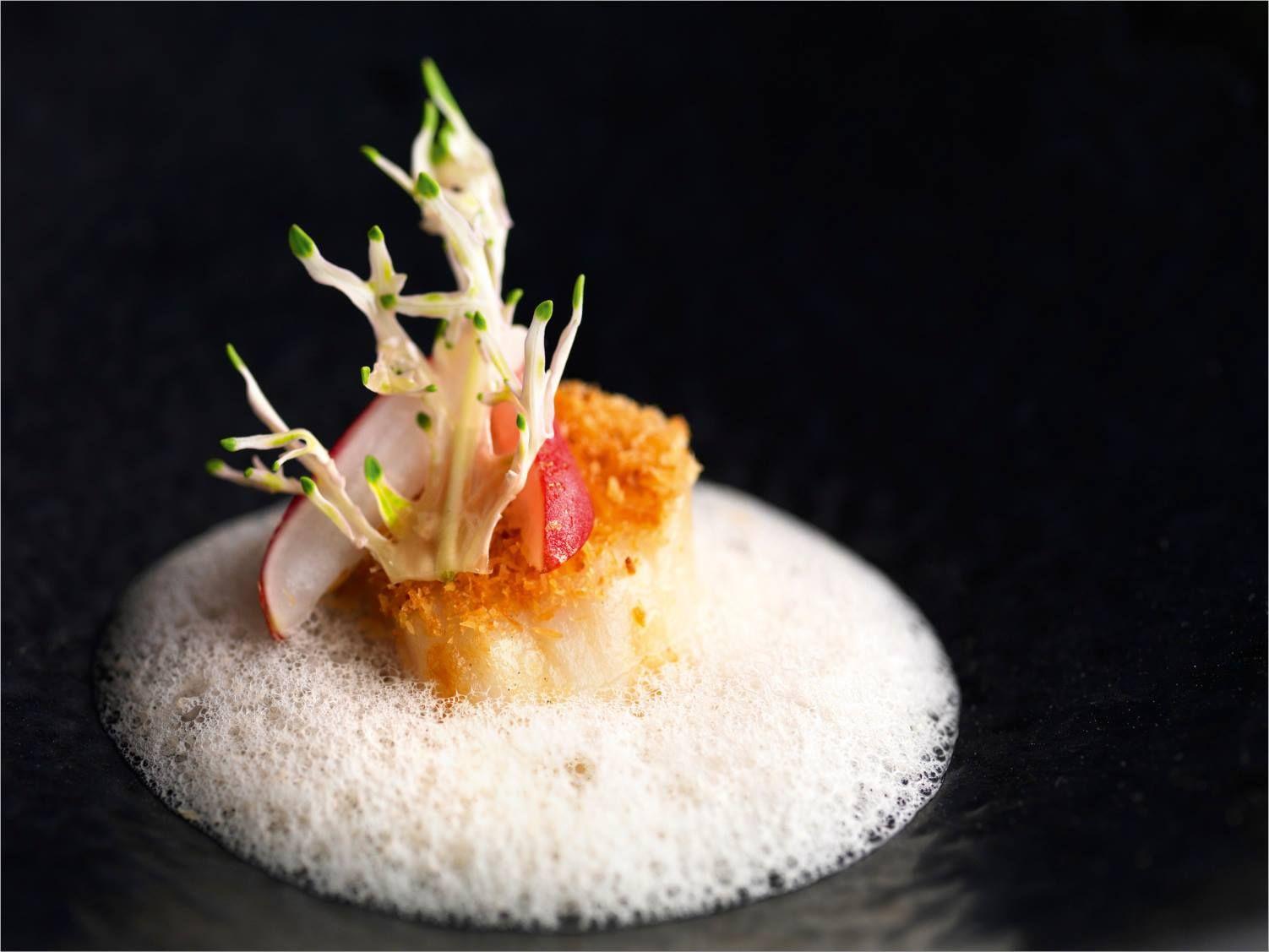 Noix De St Jacques Scallop Essen Und Trinken Fingerfood Rezepte