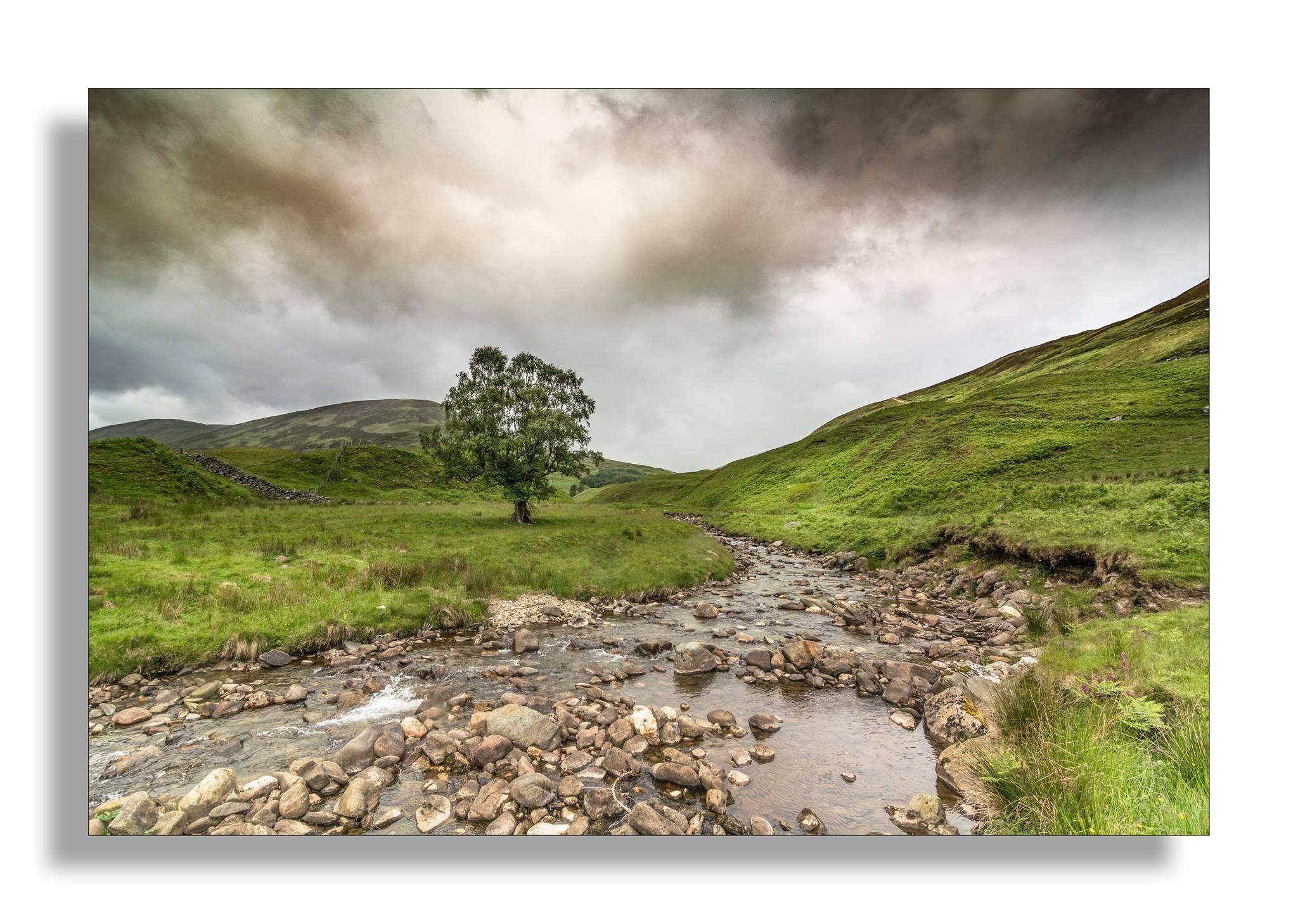 Auchnafree Estate, Perthshire   Scotland landscape, Nature ...