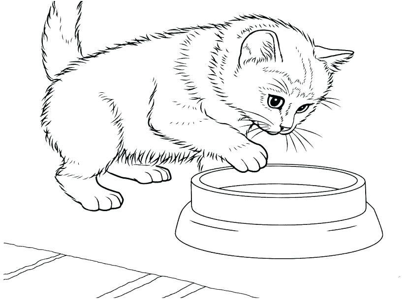Cute Kitten Coloring Pages Idea Kittens Coloring Puppy Coloring Pages Cat Coloring Page