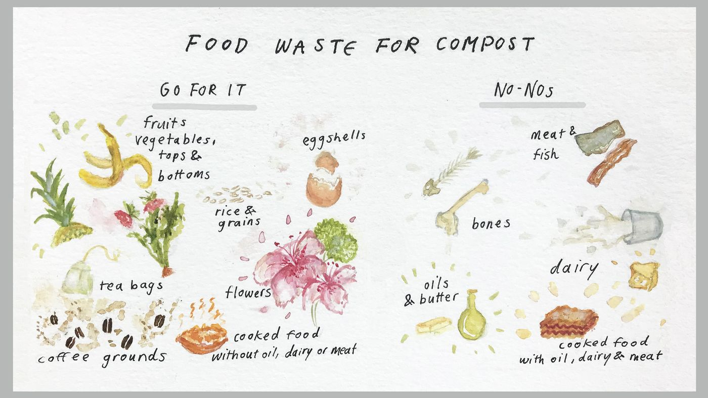 How to compost at home life kit in 2020 composting at