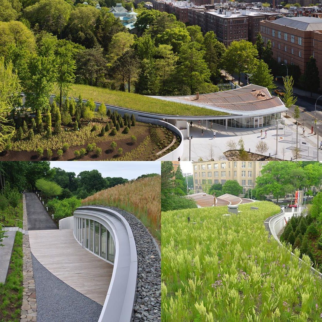 #exterior #3d #modern #architecture #house #landscapearchitecture #gardendesign #landscapedesigner #outdoor #gardenproject #garden #renderinggarden