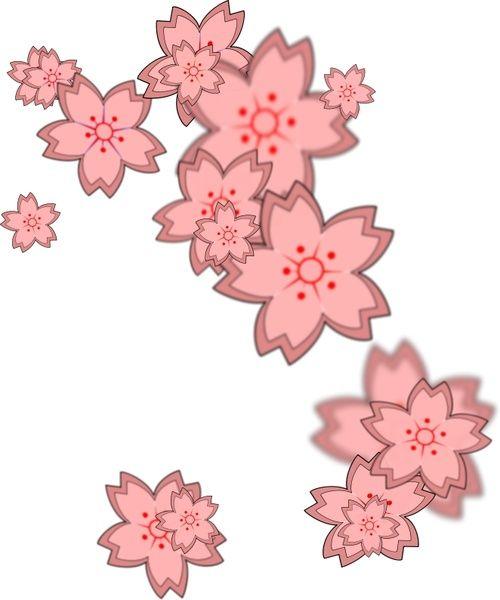 Pin Oleh Anggita Arum Di Leash Ideas Di 2021 Bunga Sakura Bunga Gambar