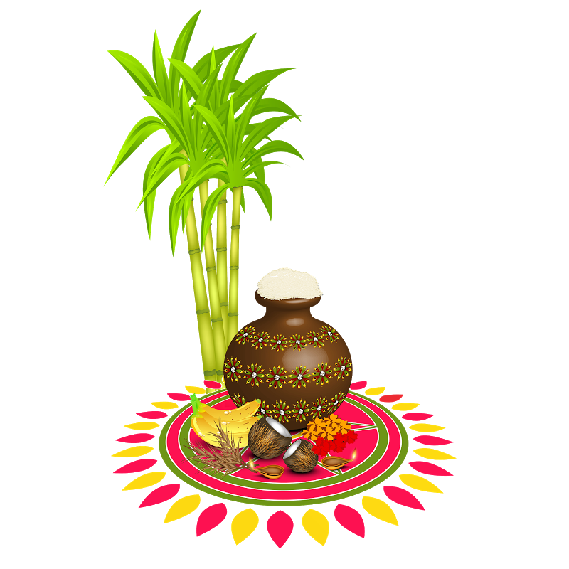 Pin by Jayam Jayamurugan on Jayamurugan Happy pongal