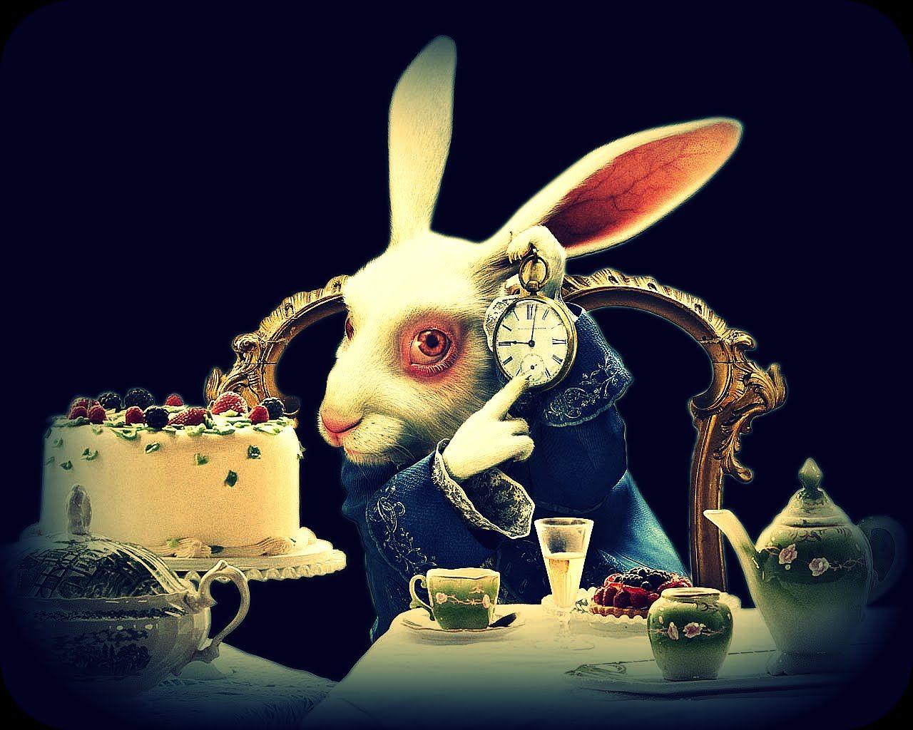 Белый кролик картинки алиса, солнечный привет картинка