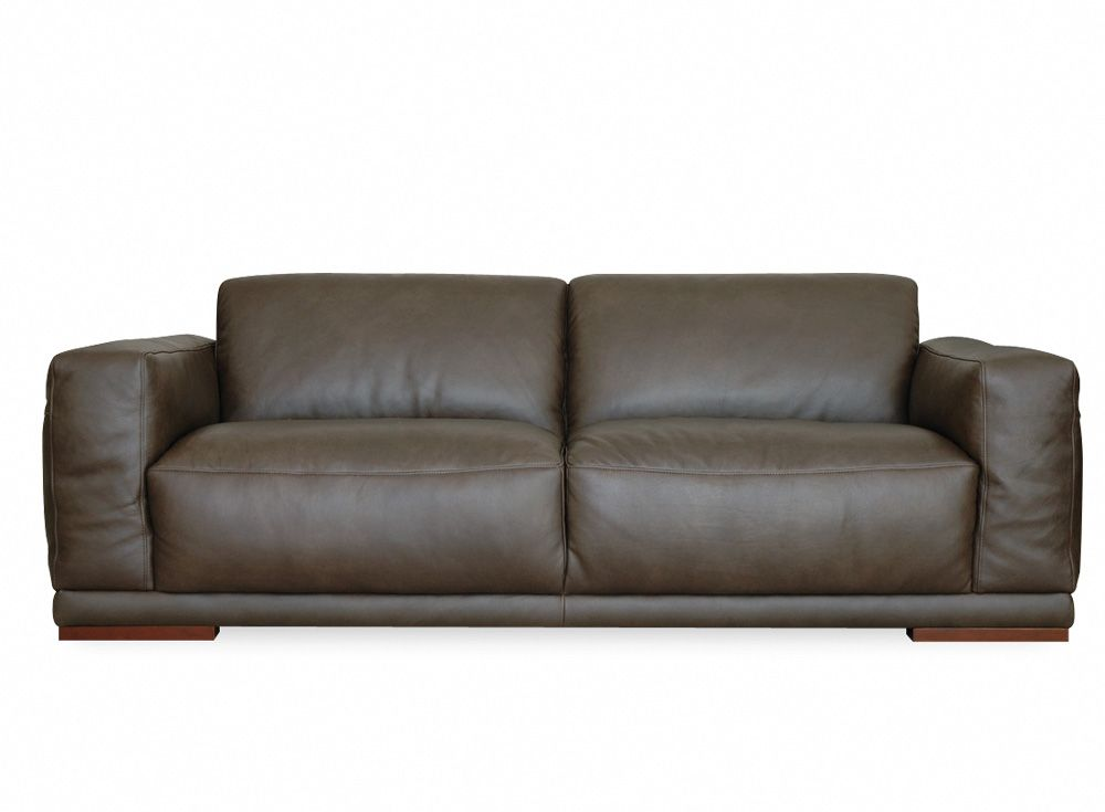 Leather Or Fabric Sofa For Family Room Sleeper Set Softy Interior Colour Board Plush 2 Seater Colorful Interiors