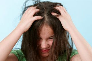 Untangling the myths about head lice