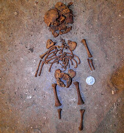 Skeletons of foetus, heavily pregnant woman and crammed men found at York church