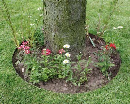 Flexible Steel Garden Edging Galvanised And Powder Coated   Everedge