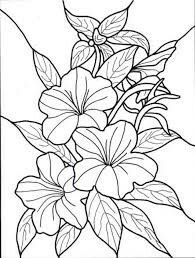 explore outline designs tropical flowers and more - Tropical Flowers Coloring Pages