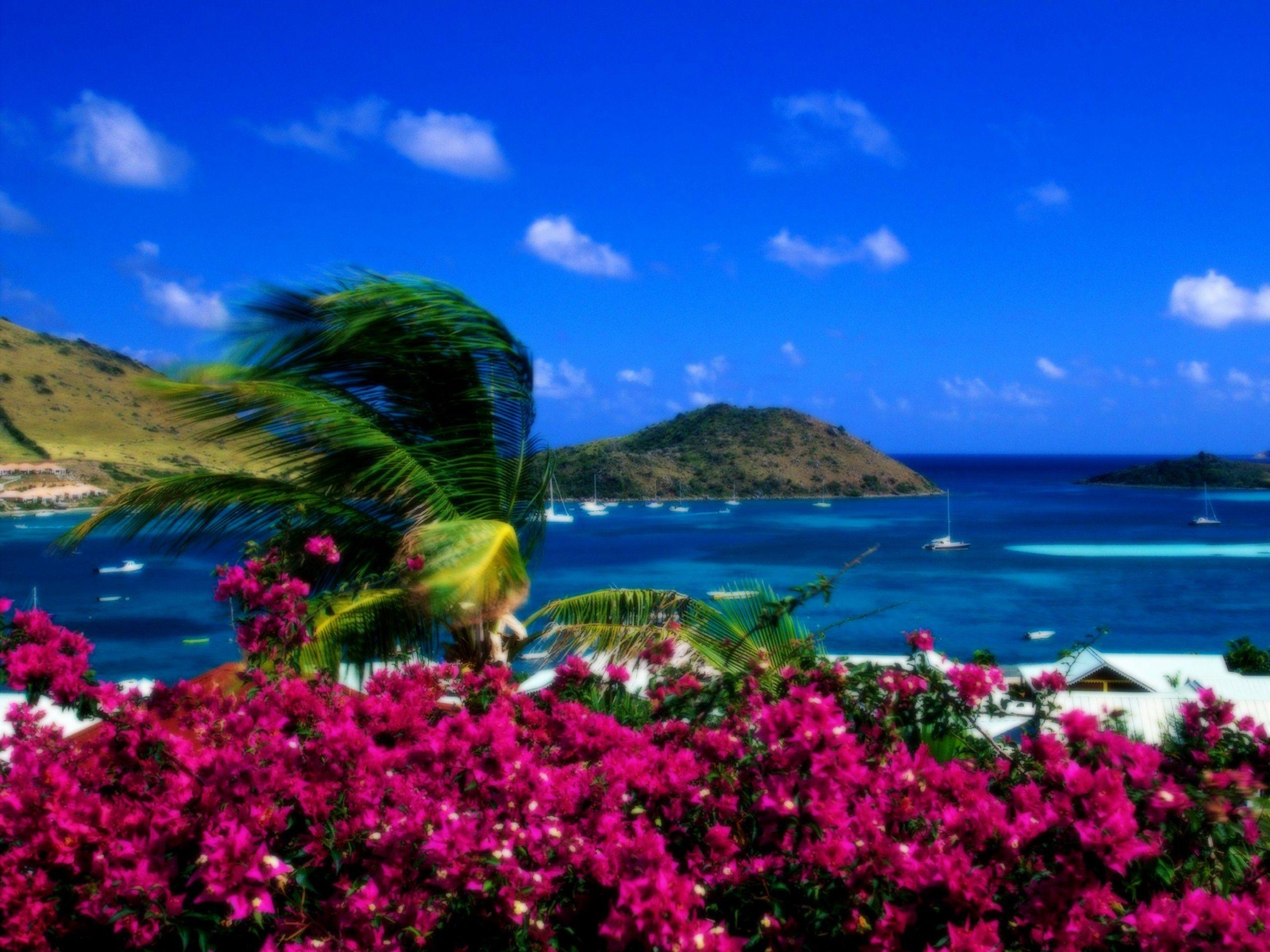 Wallpapers For > Beautiful Ocean Scenery Wallpaper