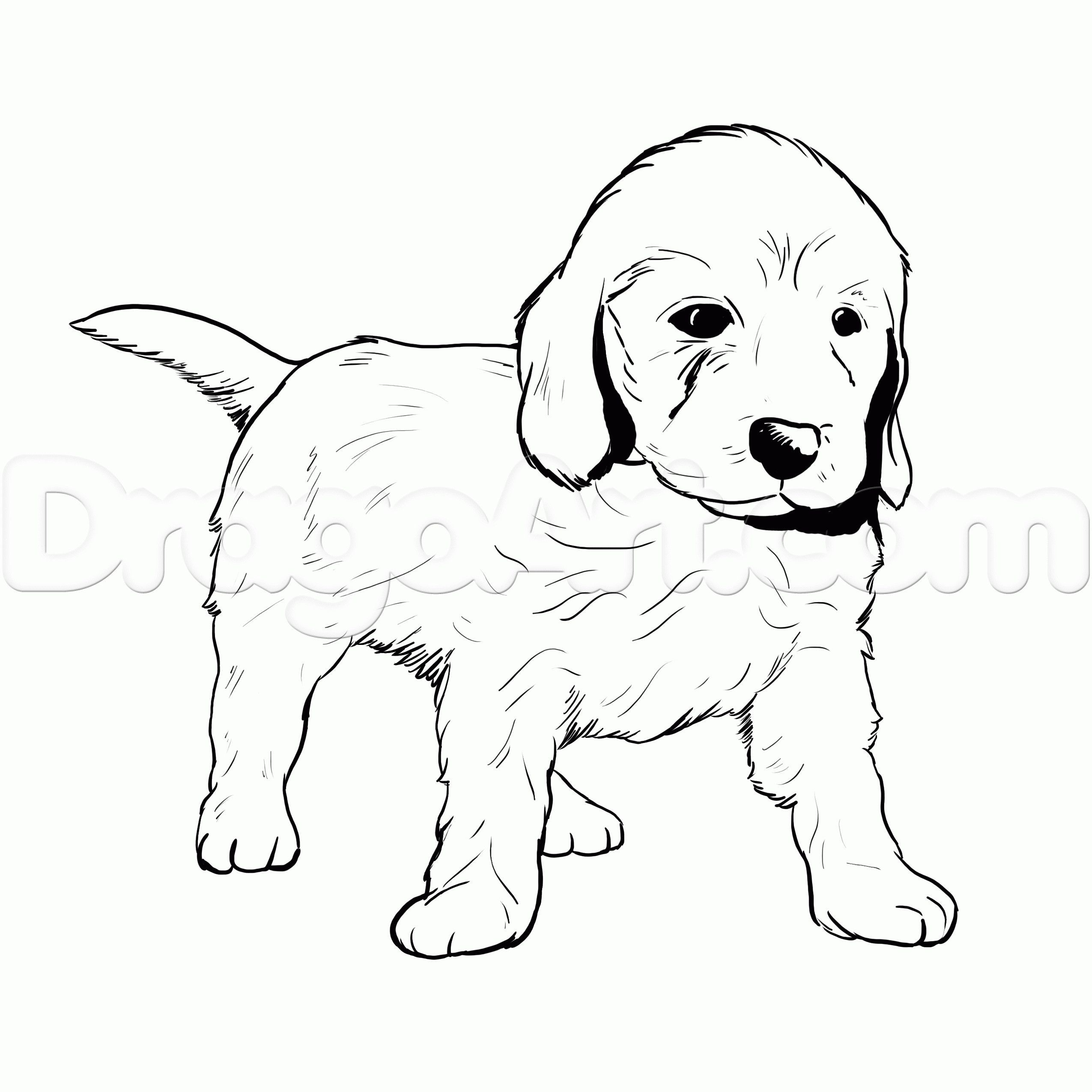 Golden Retriever Coloring Page Golden Retriever Coloring Pages New Golden Retriever Puppy Coloring Funnypuppycoloringpages Dibujos Josue Rebeca