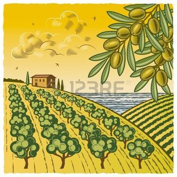 olive branch: Landscape with olive grove Illustration