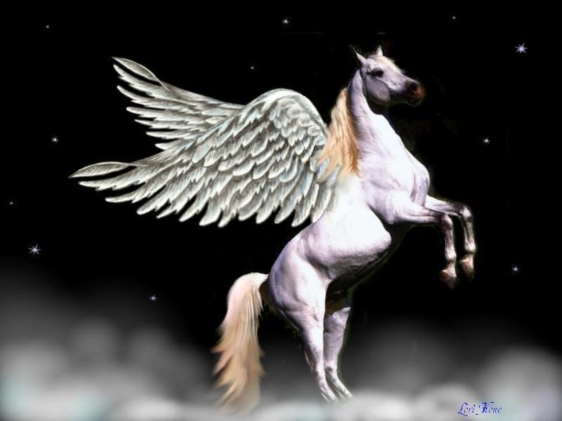 Please Don T Confuse A Pegasus With A Unicorn Thanks Pegasus Constellation Pegasus Mythology Fantasy Horses