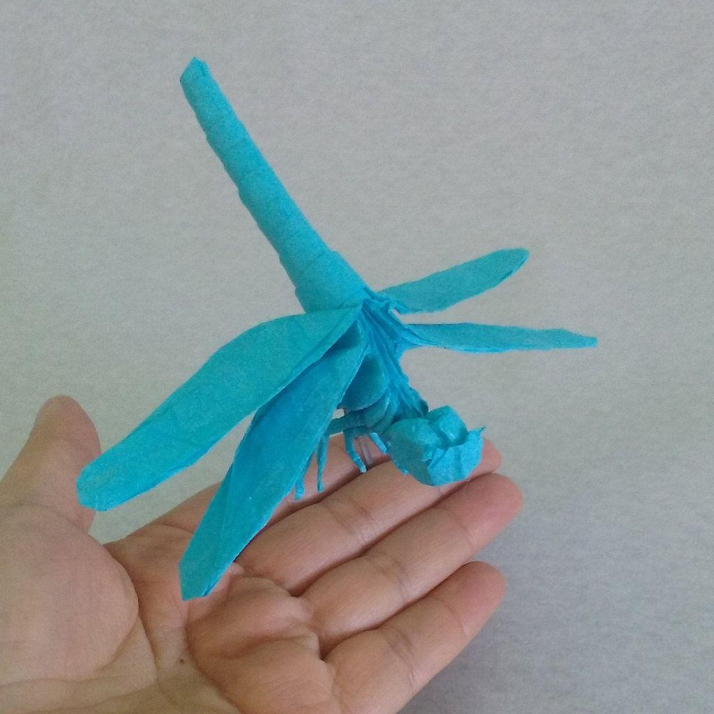 Dragonfly satoshi kamiya single thai unryu 35x35cm by carla dragonfly satoshi kamiya single thai unryu 35x35cm by carla godoy jeuxipadfo Image collections