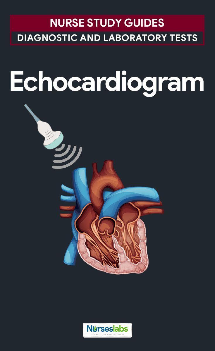 Echocardiogram nursing student tips nursing school tips