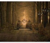 Inspiring picture avenue, castle entrance, dream, dreamland, drive, enchanted. Resolution: 480x350 px. Find the picture to your taste!