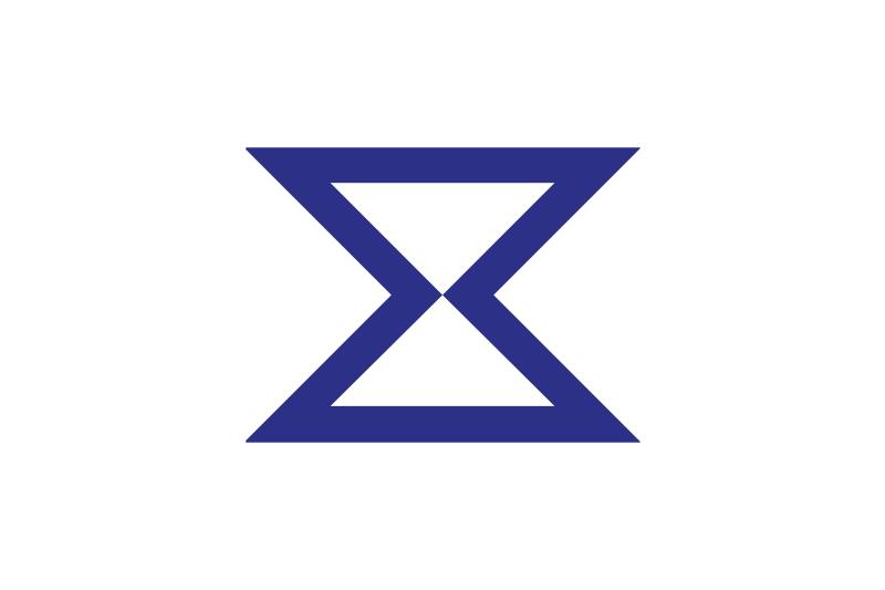 Flag of Toyohashi, Aichi