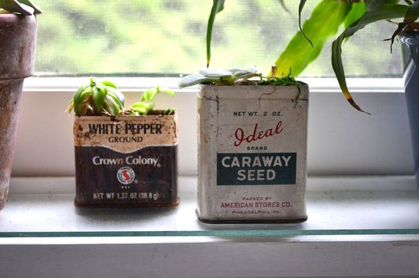 Planning Time: Get Your Garden Started With Seeds