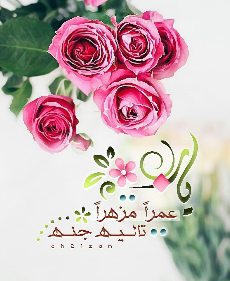 اذ ڪر و ا ال ل هـ On Instagram يارب عمرا مزهرا تاليه جنه مساء الخير صدقة لأخي دعاء تصاميم دعوية Flowers Rose Plants