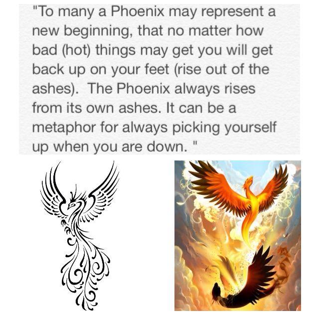 Phoenix Phoenix Tattoo Meaning Of The Phoenix Tattoos