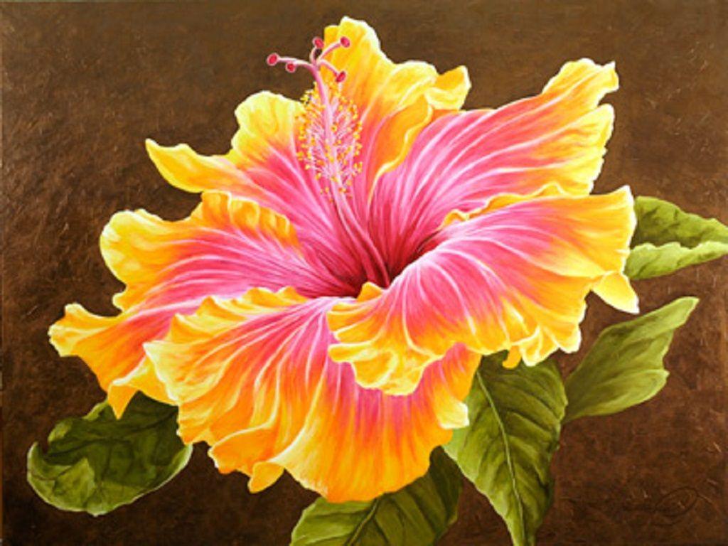 Acrylic Paintings Of Hibiscus Please Enable Javascript
