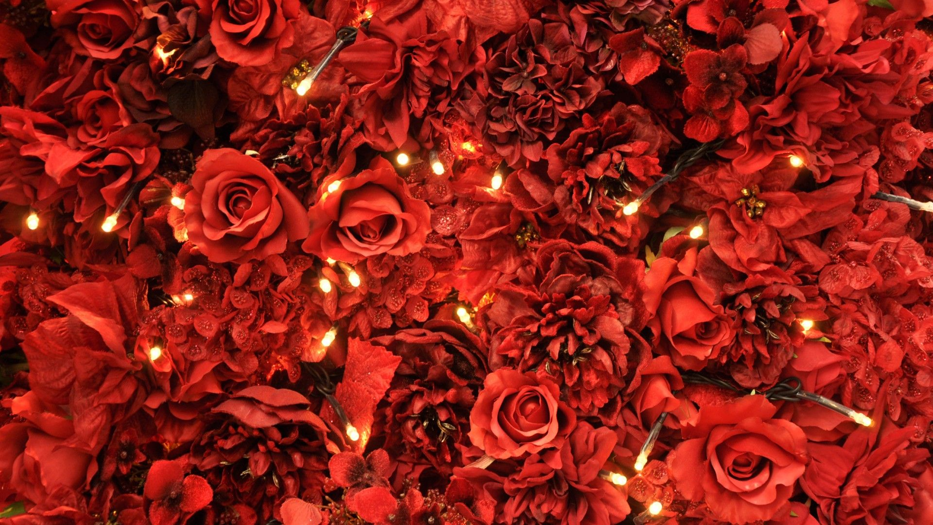 Hd Flower Wallpaper Red Roses Lights 2021 Live Wallpaper Hd Hd Flower Wallpaper Rose Wallpaper Red Rose Pictures