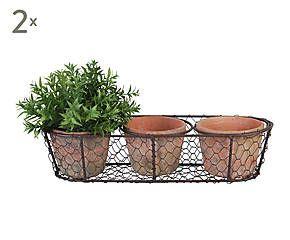 Set de 6 macetas de terracota en bandeja de zinc